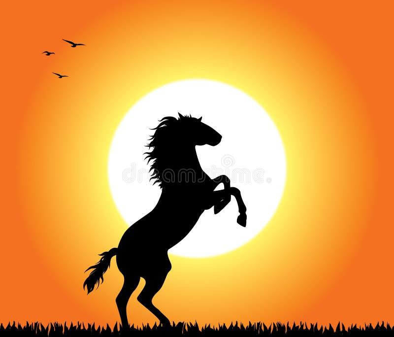 Cheval s'élevant au coucher du soleil illustration libre de droits