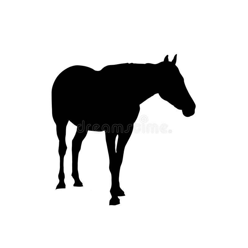 Cheval - silhouette illustration libre de droits