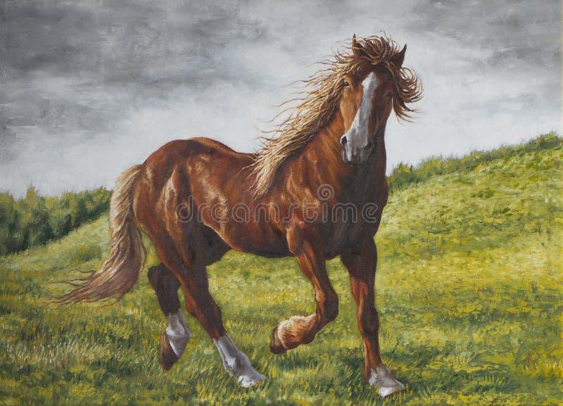 Cheval sur la prairie illustration de vecteur