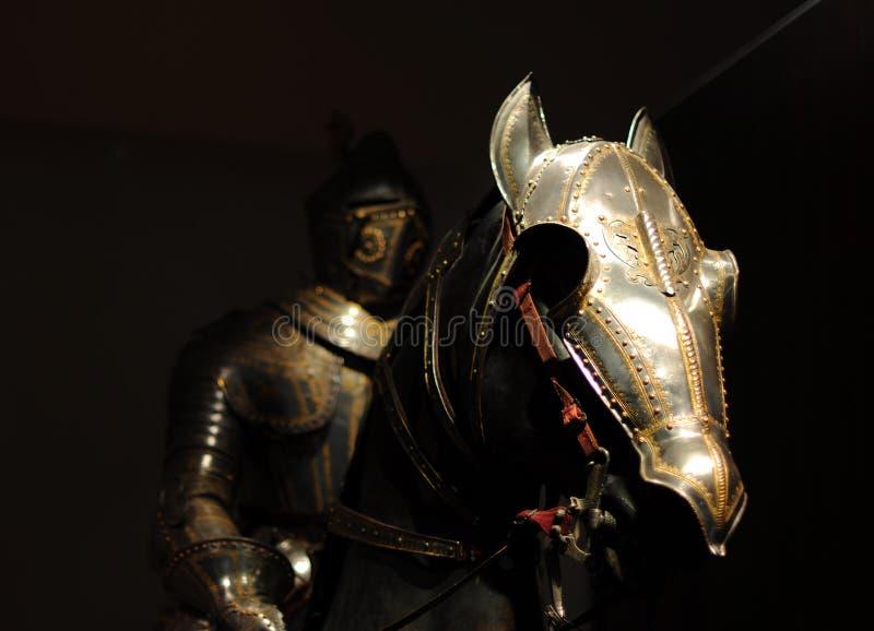 Chevalier avec le cheval image stock