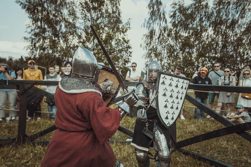 chevaliers photographie stock