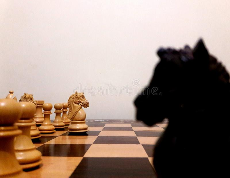 Chevaliers dans les échecs image libre de droits