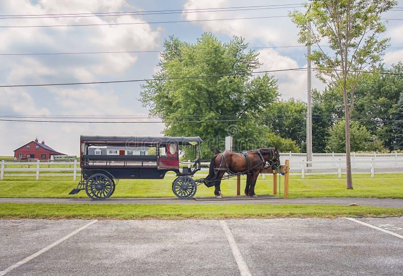 Chevaux avec le chariot dans le pays amish images stock