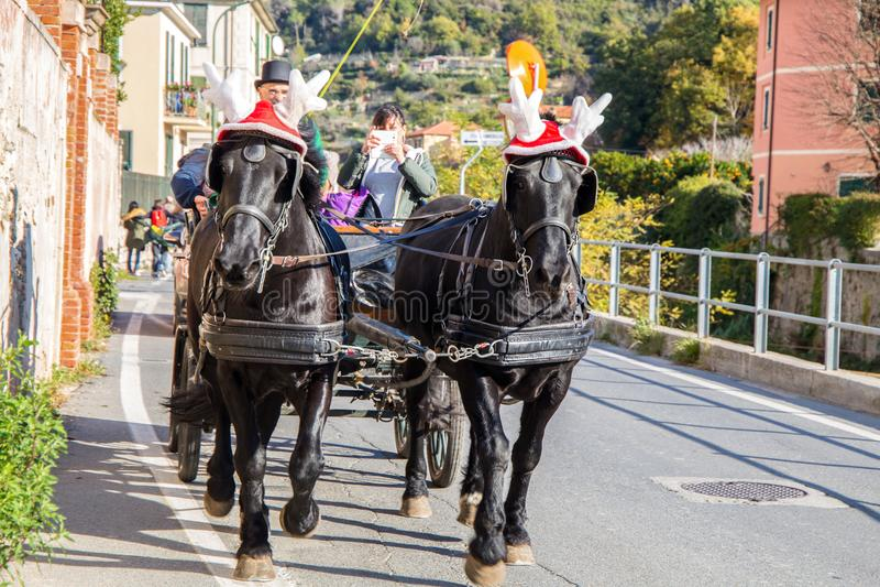 Chevaux noirs avec le chariot avec les chapeaux drôles de Noël, Italie photographie stock