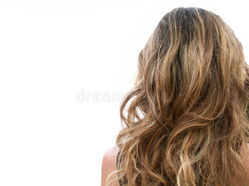 Cheveu blond image stock