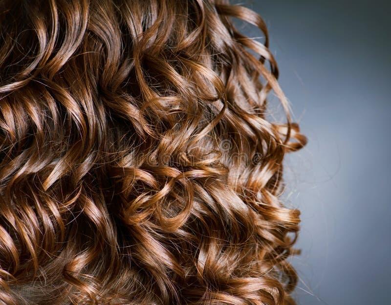 Cheveu bouclé de Brown photographie stock