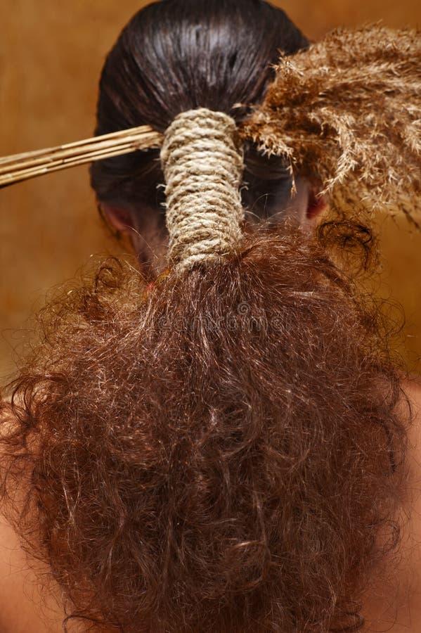 Cheveu dans le type ethnique photos libres de droits