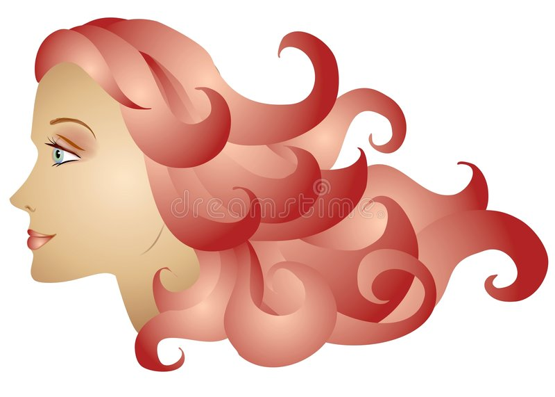 Cheveu rouge de profil de femme long illustration libre de droits
