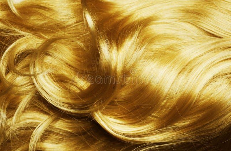 Cheveu rouge sain photo stock