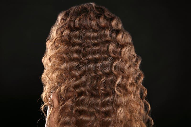 Cheveu sain Longue coiffure bouclée Vue arrière des poils de Brown Ha photo stock
