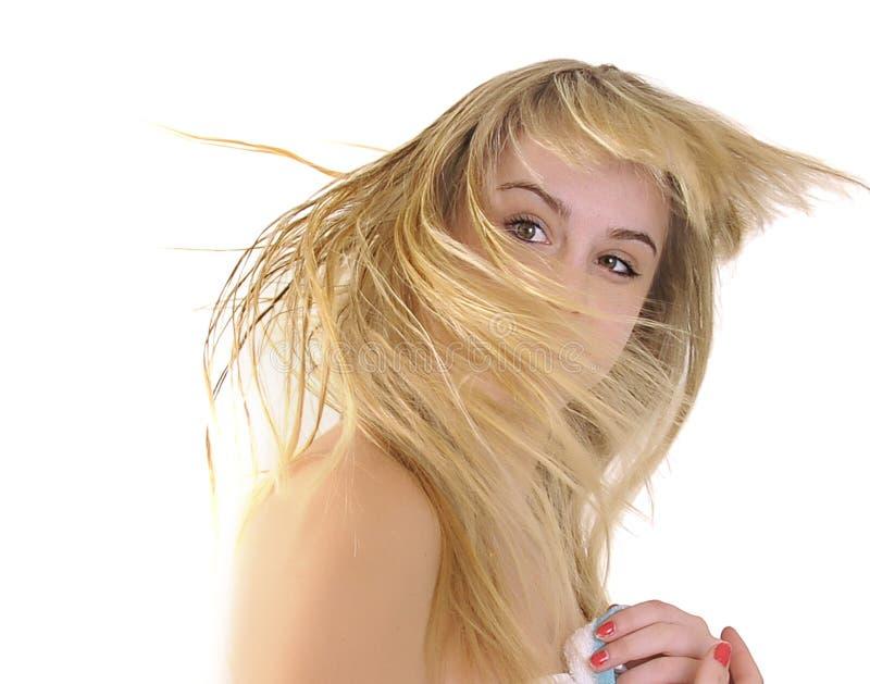 Cheveu sauvage photographie stock libre de droits