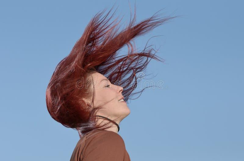 Cheveux Photo libre de droits