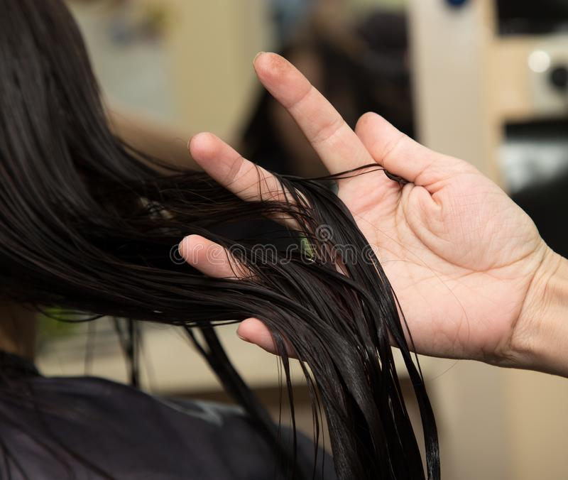 Cheveux du ` s de femmes photos stock