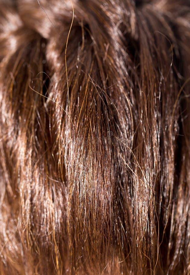 Cheveux du ` s de femmes images stock