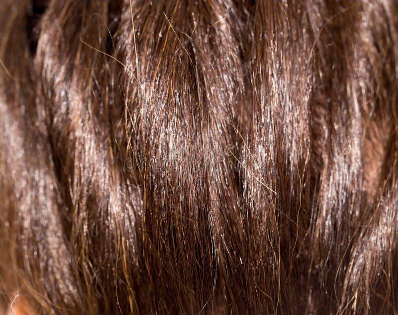 Cheveux du ` s de femmes photos libres de droits