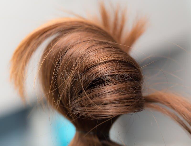 Cheveux du ` s de femmes Macro image libre de droits