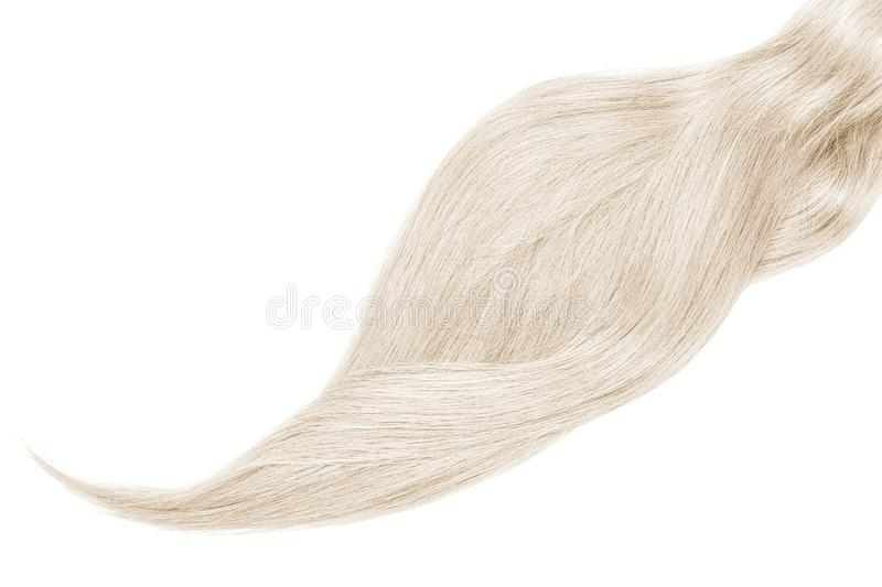 Cheveux gris, d'isolement sur le fond blanc Longue belle queue de cheval photo stock