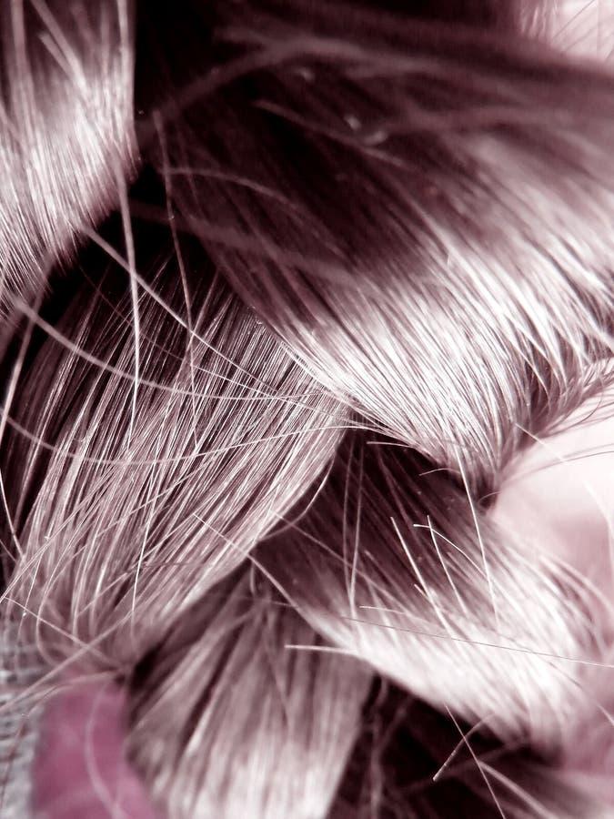 Download Cheveux Humains - Haut Proche Image stock - Image du extérieur, coiffeur: 8661505