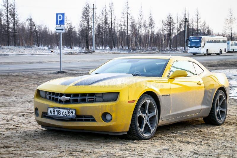 Chevrolet Camaro royalty-vrije stock foto