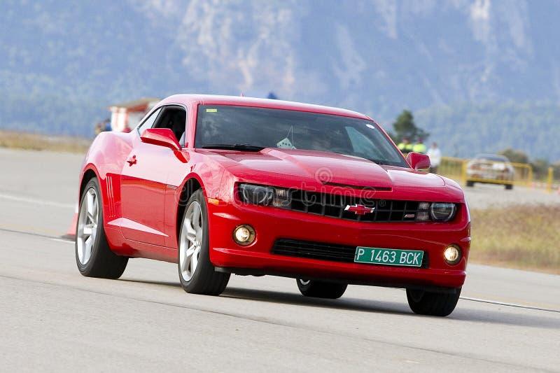 Chevrolet Camaro immagine stock libera da diritti