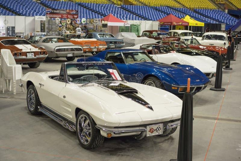 Chevrolet Corvette utveckling royaltyfri fotografi
