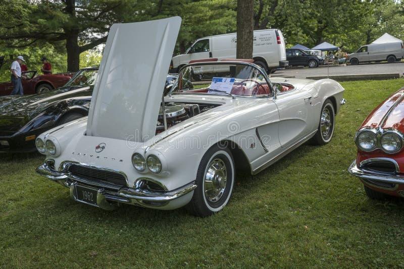 Chevrolet- Corvettekabriolett lizenzfreies stockbild
