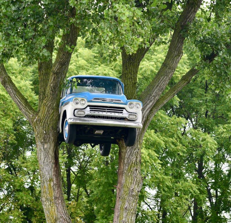 Chevrolet in de Bomen stock foto