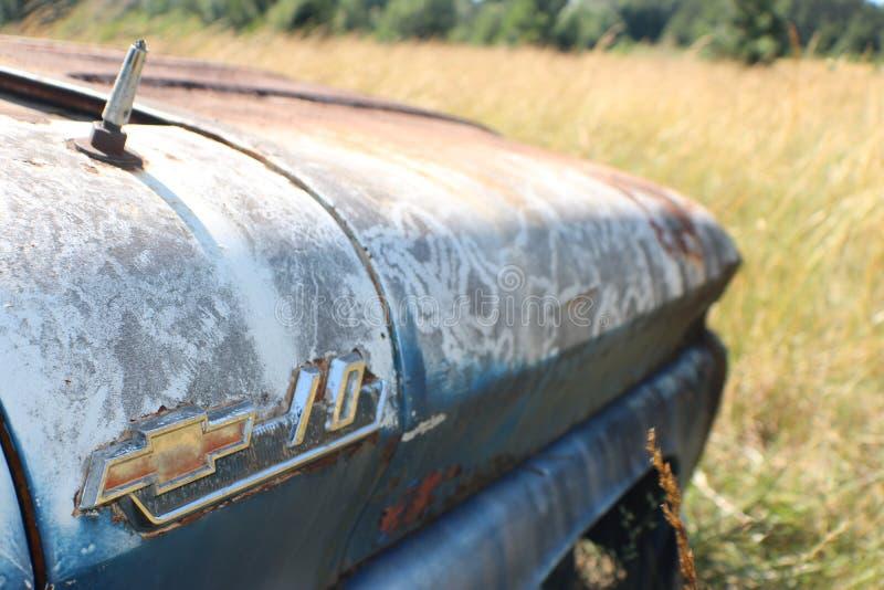 Chevy velho C10 em um campo foto de stock
