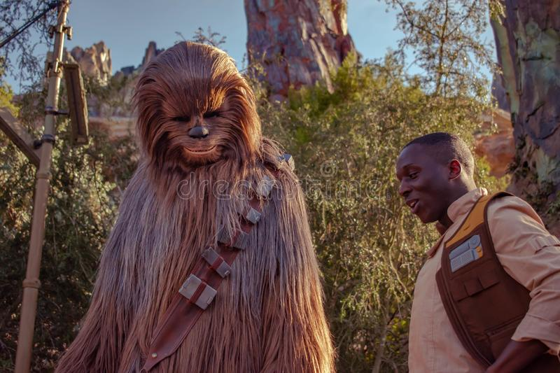 Chewbacca and character in Star Wars Galaxys Edge at Hollywood Studios 4. Orlando, Florida. November 27, 2019 Chewbacca and character in Star Wars Galaxys Edge stock photography