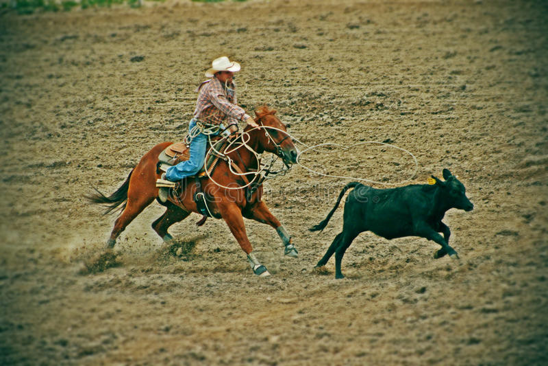Cheyenne Frontier Days fotografering för bildbyråer