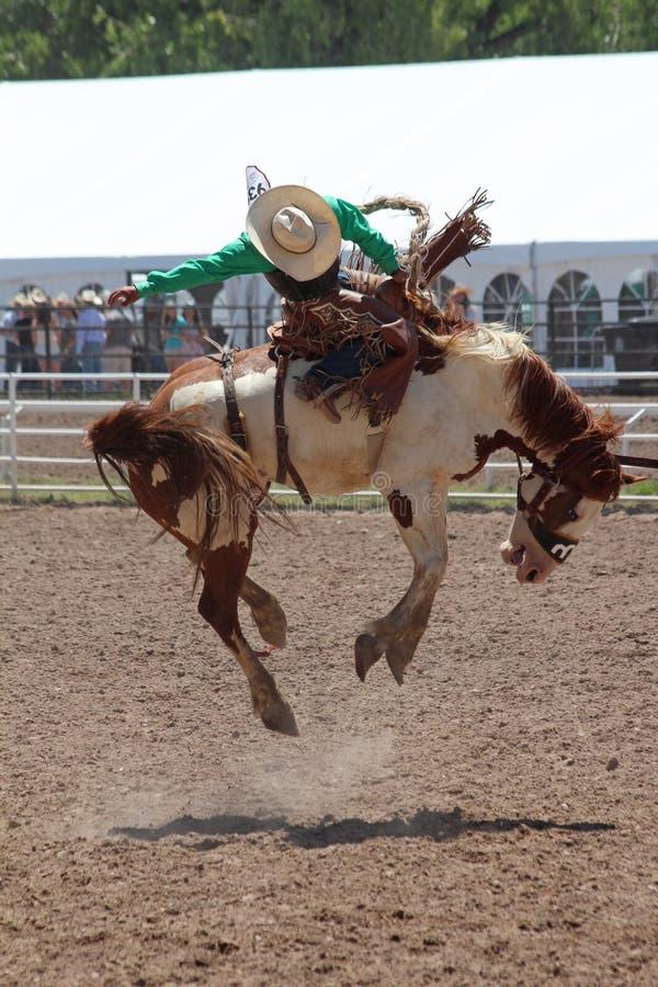 Cheyenne Frontier Days Rodeo 2013 imágenes de archivo libres de regalías