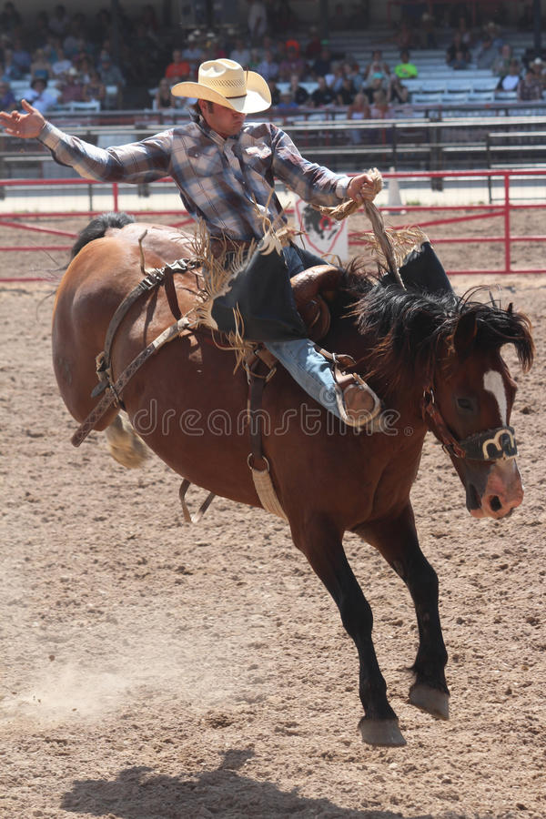 Cheyenne Frontier Days Rodeo 2013. Since 1897, Cheyenne has celebrated its Old West roots with this eye-popping festival. The centerpiece of this Western stock photo