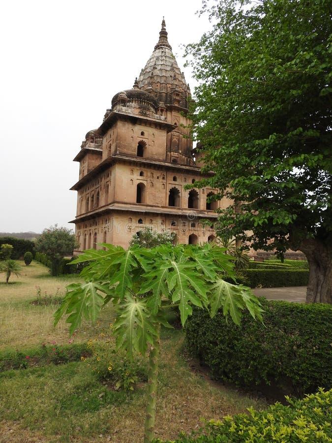 Chhatri, temps clair, Orchha, Madhya Pradesh, Inde image libre de droits
