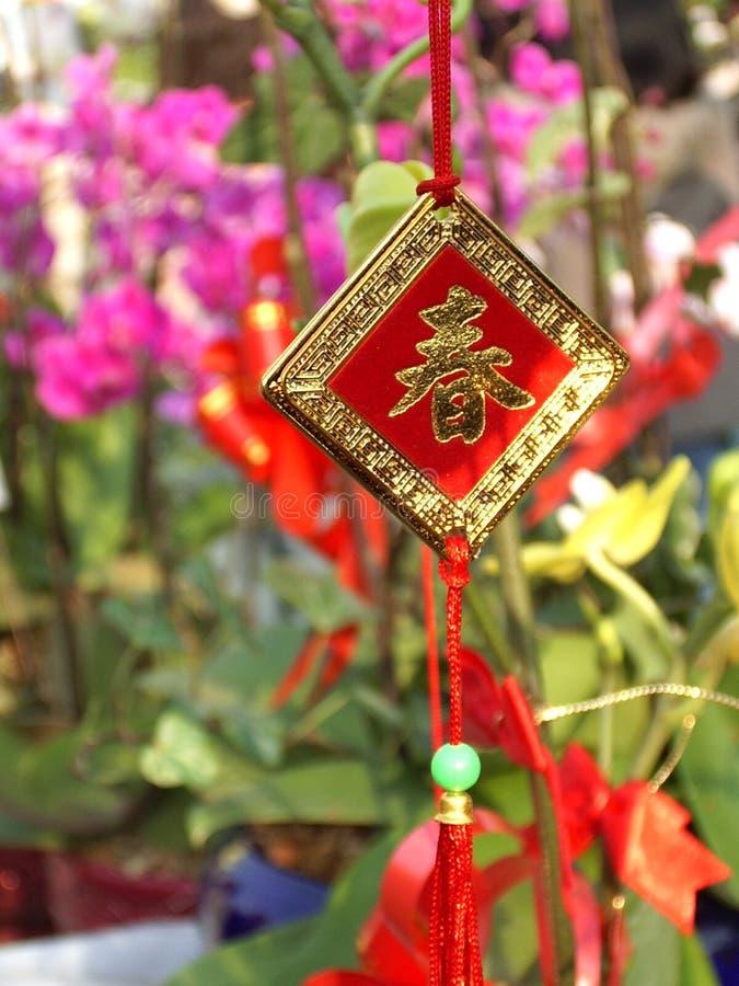 chińczycy charakteru obrazy royalty free