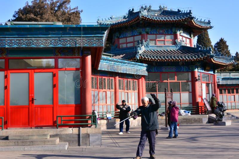 Chińczyk Kung Fu w Pekin parku obrazy royalty free