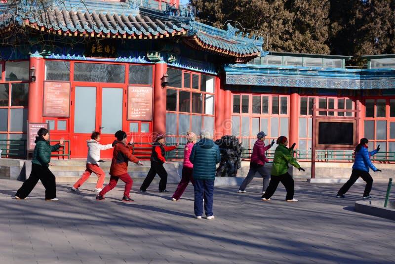 Chińczyk Kung Fu w Pekin parku zdjęcia royalty free