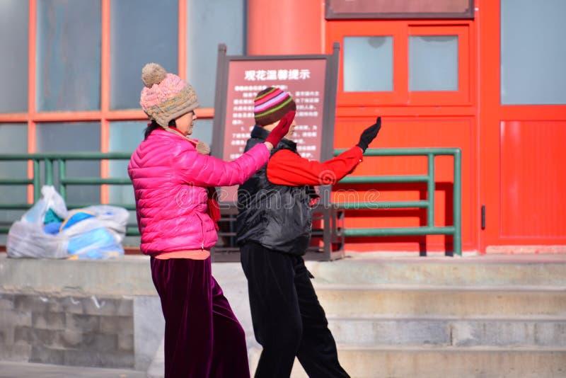 Chińczyk Kung Fu w Pekin parku zdjęcie stock