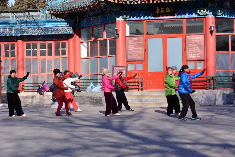Chińczyk Kung Fu w Pekin parku obraz stock