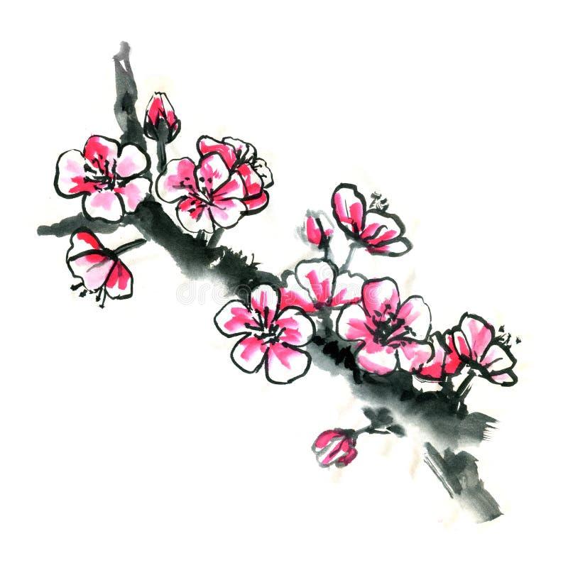 Chińczyka Sakura Japońskiej śliwki okwitnięcia grunge wiosny sumi-e ilustracja wektor