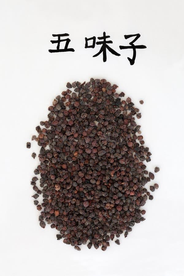 Chińczyka Schisandra jagody obrazy stock