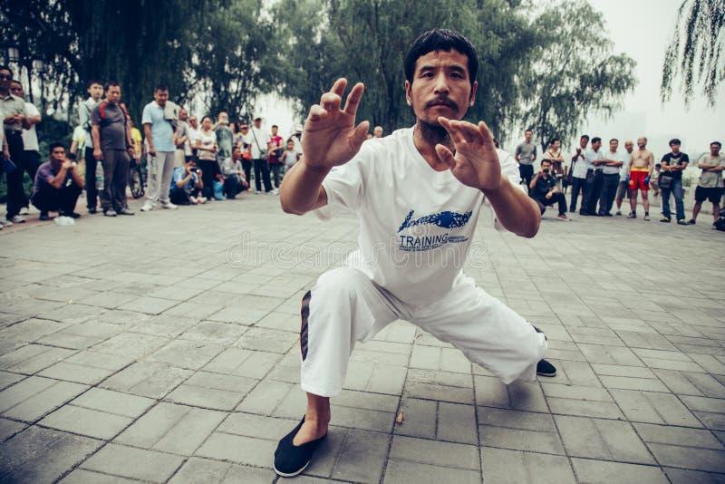 Chińczyka Wushu występ (Kung Fu) obraz royalty free