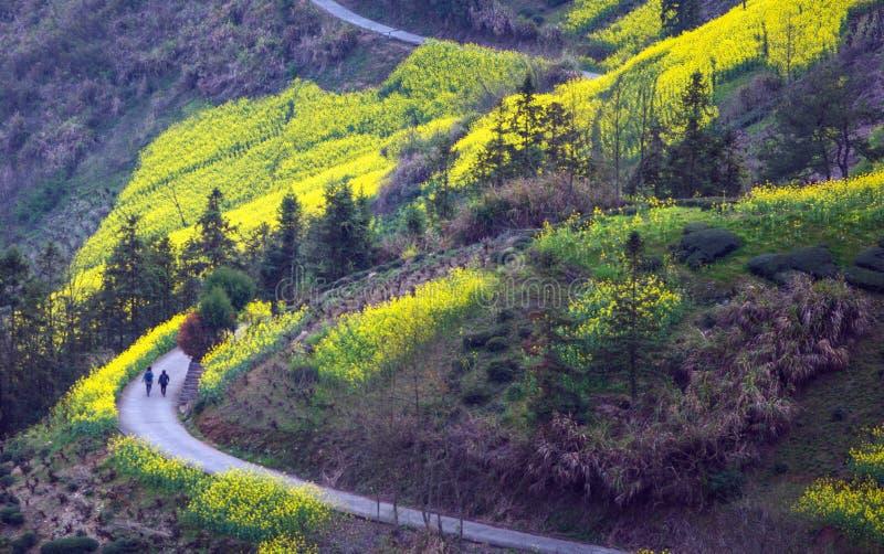 Chińska antyczna stara dolinna droga w górze, w Huangshan, Anhui, Chiny obrazy royalty free