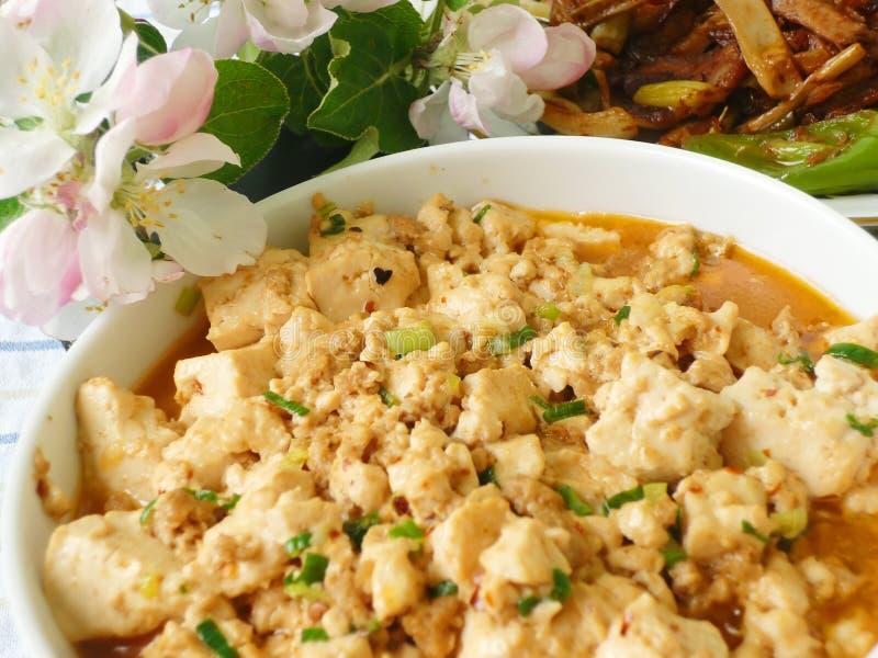 Chińska Karmowa Specjalność - Tofu zdjęcia stock