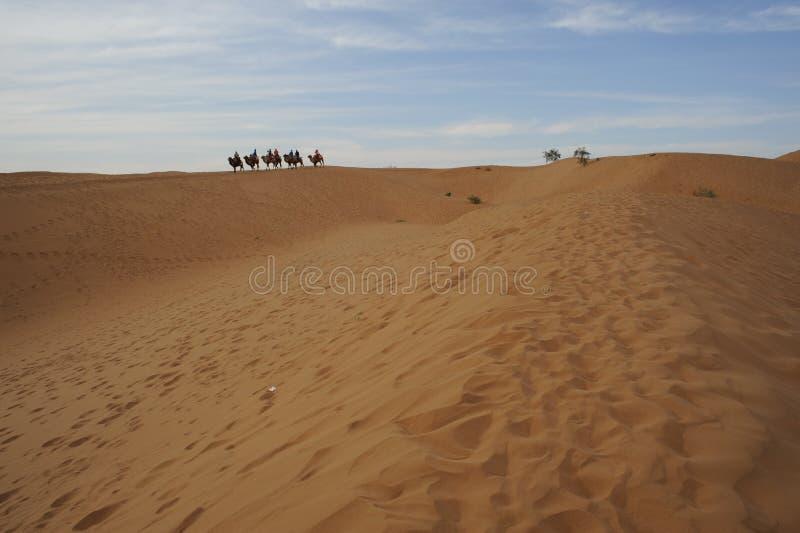 Chińska północno-zachodni Tengger pustynia zdjęcie stock