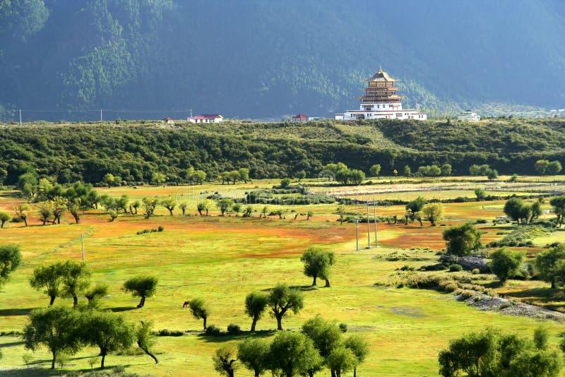 Chińska pagoda w Tybet fotografia royalty free