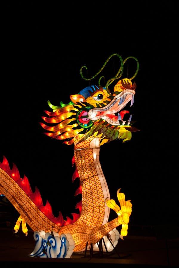 Chińska smoka lampionu instalacja obraz stock
