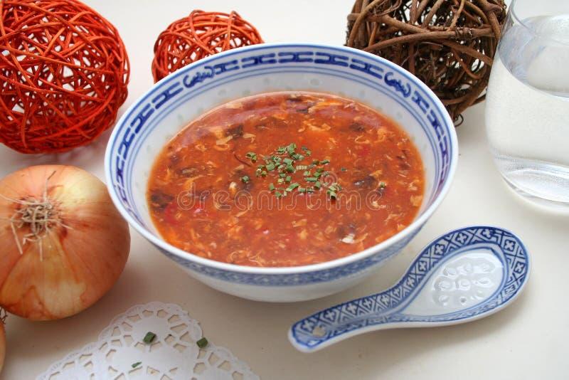 chińska zupy fotografia royalty free