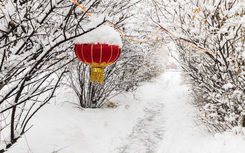 Chiński czerwony latarniowy północnego wschodu śniegu drzewo zdjęcie stock