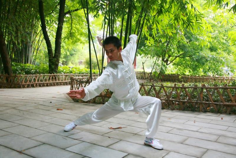 chiński kongfu zdjęcia royalty free