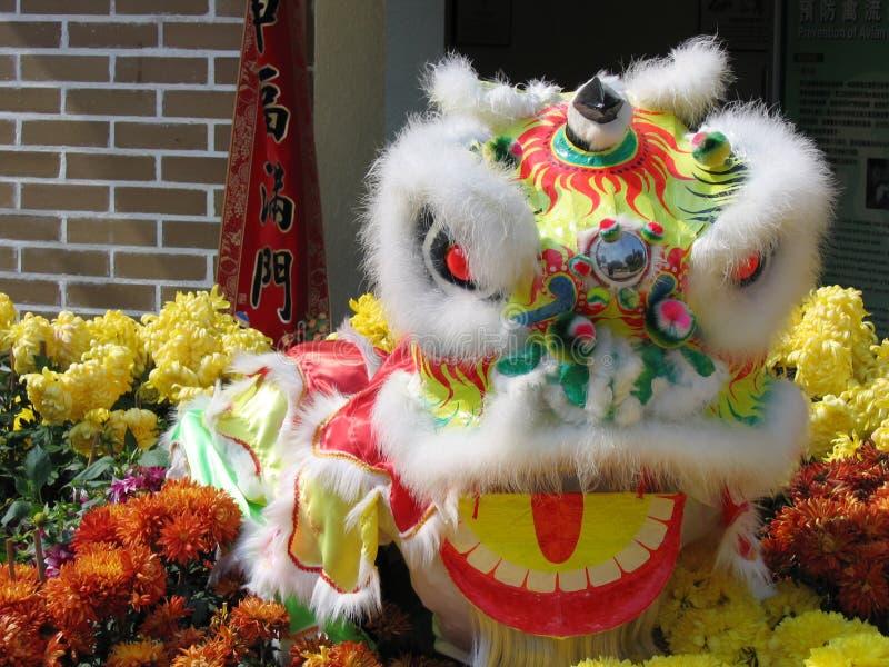 chiński lew zdjęcie royalty free